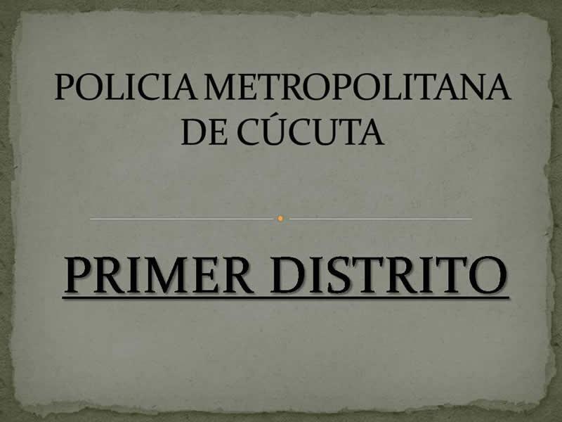 Casos Operativos Relevantes – 110810 Primer Distrito Mecuc