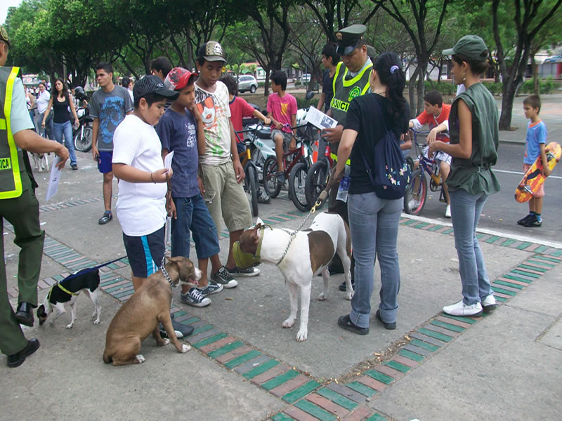Policía Lidera Campaña De Protección A Los Animales