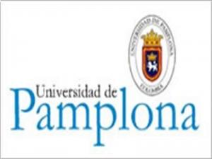 Universidad de Pamplona va por buen camino: Viceministro de Educación.