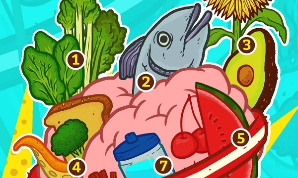 Alimentoscerebro_baja