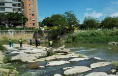 ACTIVIDAD RIO PAMPLONITA (2)