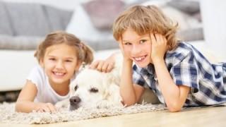 Geschwister spielen mit dem Golden Retriever Hund