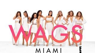 WAGS_Miami_S2_KeyArt_WHT