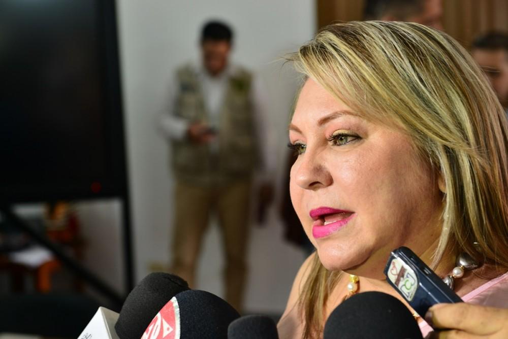 Cecilia Soler de Villamizar, Gestora social (Software Para Detectar Contenido Sexual)