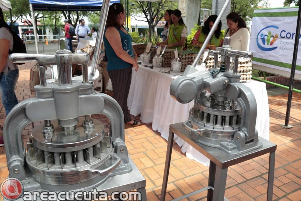 Entrega de capital semilla para asociaciones de Mujeres de San Calixto, Chinácota, Ragonvalia, Mutiscua y Durania (2)