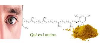 Luteína, Qué es, Beneficios, Alimentos y Contraindicaciones con ...